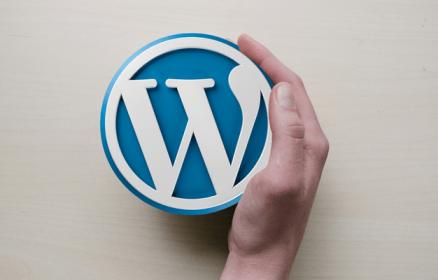 המדריך המעשי לאבטחת אתר וורדפרס (WordPress) – חובה לכל מנהל IT