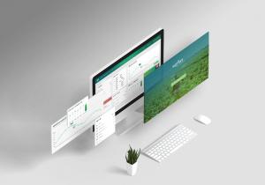 תמונה של עיצוב חווית משתמש