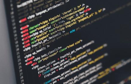 פיתוח אתר: PHP או Net.?